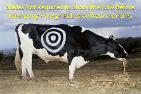 Cow and the Clean Air Act